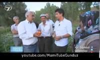 gunduz-gece--agridogubeyazit--11-ekim-2014-cumartesi-full