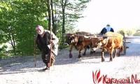 erzurum-karayazi-tanitim-filmi