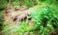 trabzon-hayrat-tanitim-filmi