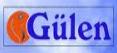 Gülen Turizm Online Otobüs Bilet Fiyatı
